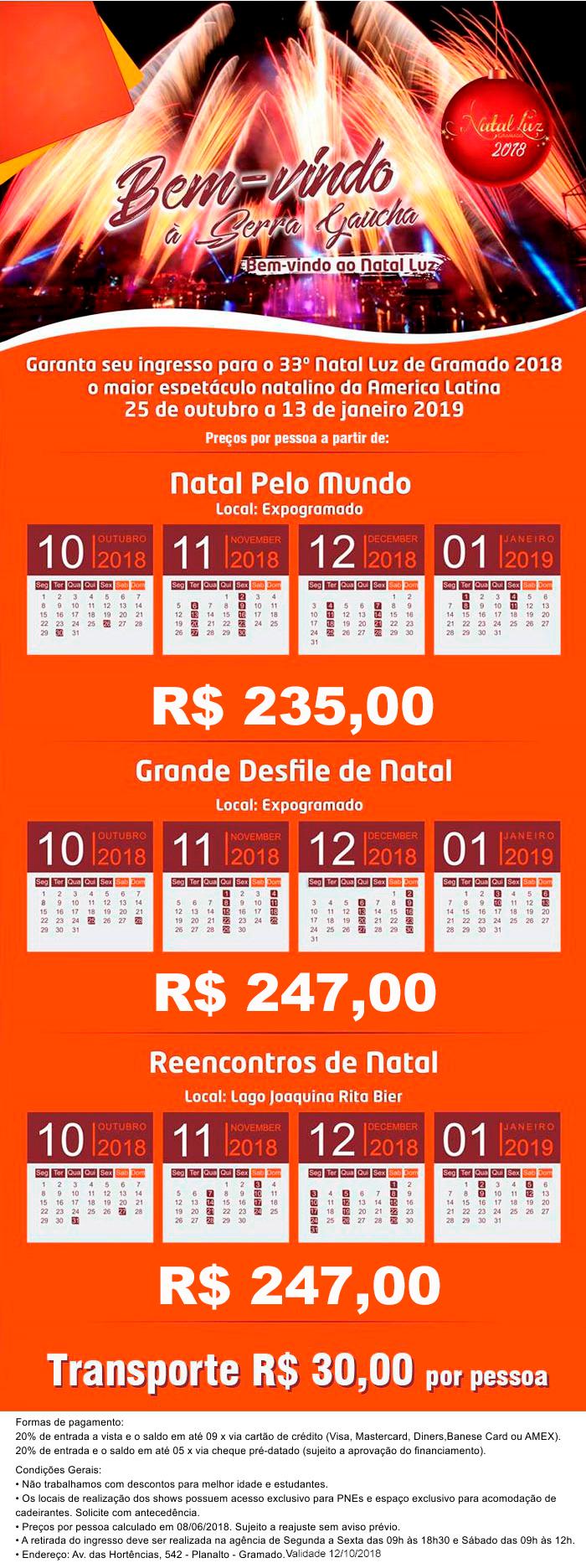 20180814_NatalLuz_Serra_Gaucha.png (700×1872)